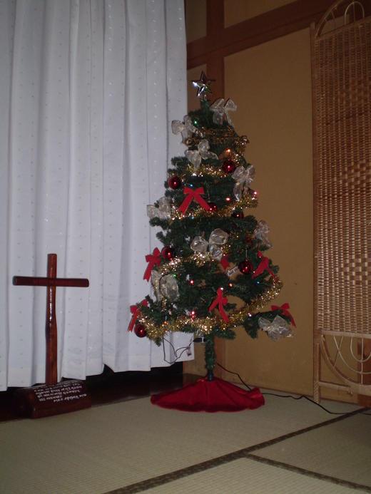 いとすぎ教会初のクリスマスツリー